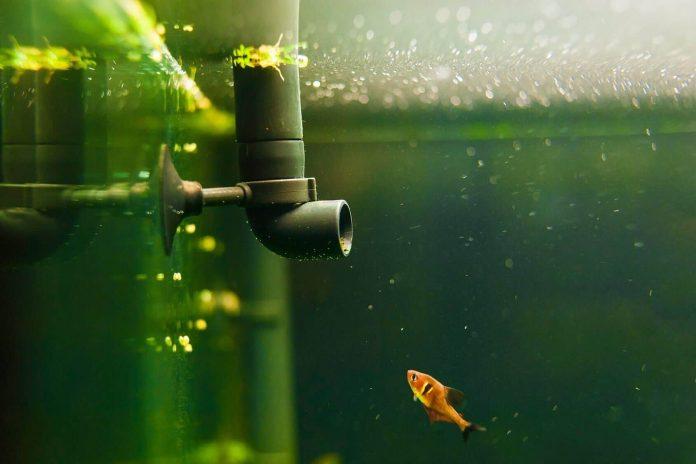 submersible pumps for aquariums